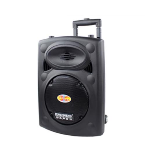 loa-keo-di-dong-ha-noi-dp-107-bass-25